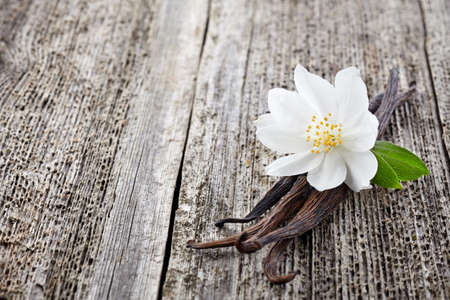 Jasmine with vanilla on a wooden backgroundの写真素材