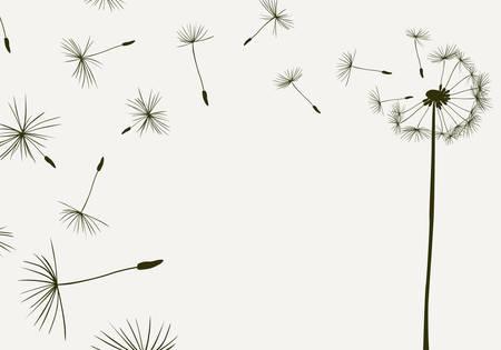 dandelions flying in the wind