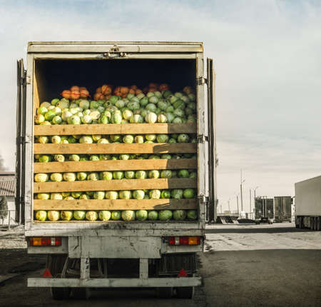 Photo for trailer laden with cabbage - Royalty Free Image
