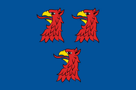Flag of Pasewalk Vector illustration