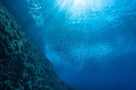 Photo pour Rays of sunlight into the sea - image libre de droit