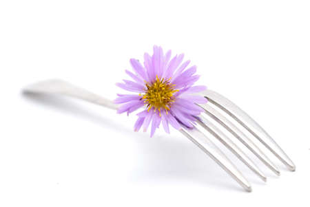 flower and fork isolated on a white background