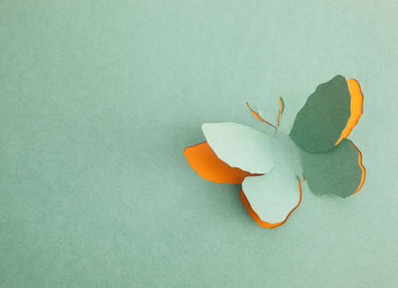 Photo for Butterfly origami - Royalty Free Image