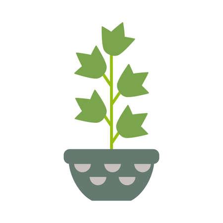 Illustration pour houseplant with potted on white background - image libre de droit