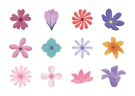 Illustration pour beautiful and colorful flowers icon set over white background, vector illustration - image libre de droit