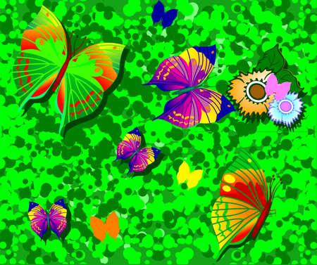 Butterfly on green grass.