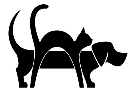 Dog and Cat Composition isolated on white