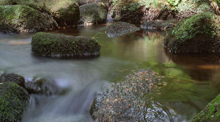 A wide shot of a slow stream with the motion of the colorful water blurred around moss covered rocks and stones