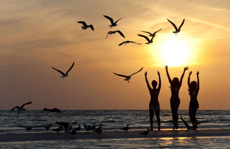 Three beautiful young women in bikinis dancing on a beach at sunset surrounded by sea gull birds all in silhouette