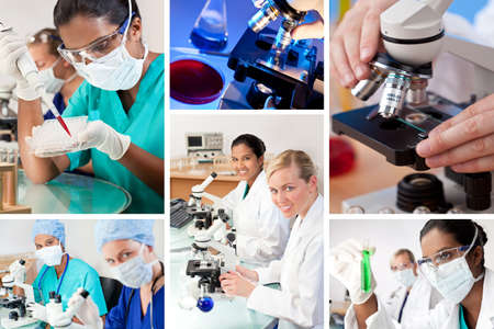 Two female medical or scientific researchers using microscopes working in a laboratory one Indian Asian one Caucasian