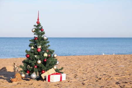 Photo for Christmas tree with the gift of tropical resort on the beach - Royalty Free Image