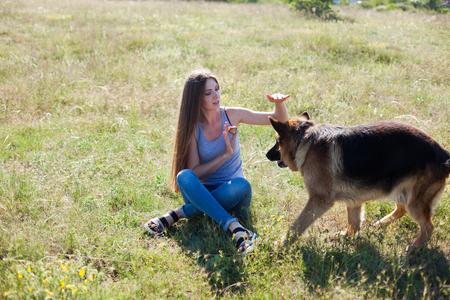 woman plays with dog sheepdog training nice