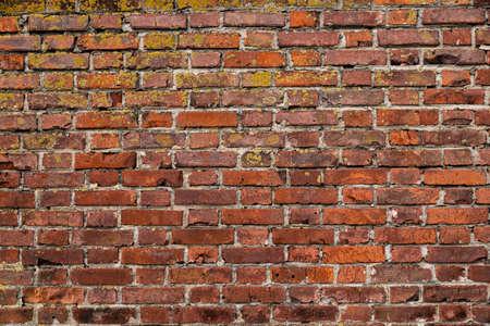 Foto de Macro texture of a beautiful red brickwork. - Imagen libre de derechos