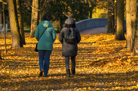Photo for Indian summer two unidentified women walk through a yellow park view of their backs in the shade - Royalty Free Image