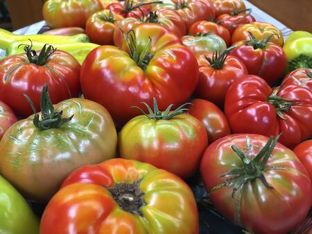 Photo for Still life - Ripe juicy tomatoes close up from the garden - Royalty Free Image
