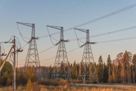 Foto de the high-voltage power lines in the forest among the trees - Imagen libre de derechos