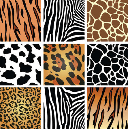animal skin textures of tiger, zebra, giraffe, leopard and cow
