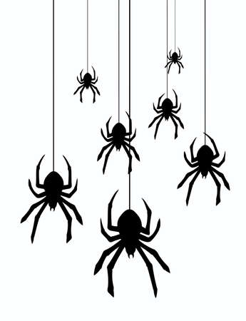 vector illustration of hanging spiders