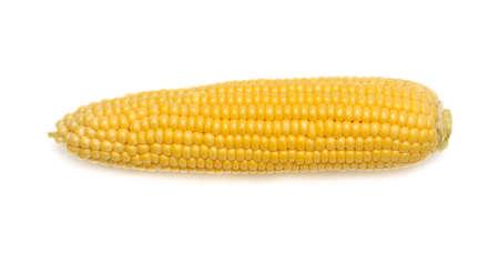 Foto für Fresh corn on white background - Lizenzfreies Bild