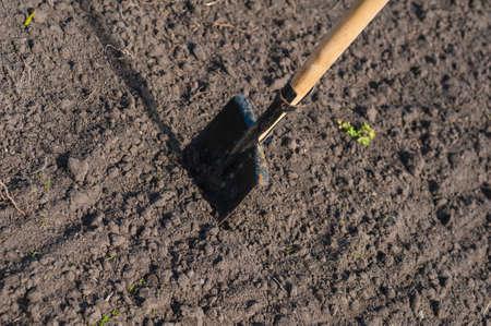 toil work of ground  spade insert soil
