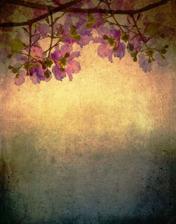 Photo pour Kind of queen crape myrtle flowers on vintage background  - image libre de droit