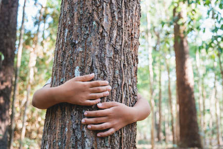 Photo pour Child stand behind and give a hug to the old tree in the tropical forest - image libre de droit