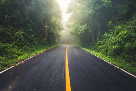 Photo pour Wet asphalt road and foggy weather through the tropical forest on the mountain at daytime, rainy season in Thailand - image libre de droit
