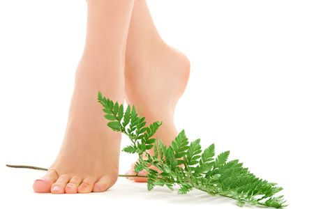 picture of female feet with green leaf over white