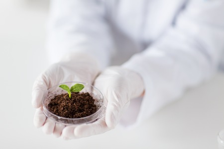 science, biology, ecology, research and people concept - close up of scientist hands holding petri dish with plant and soil sample in bio laboratory