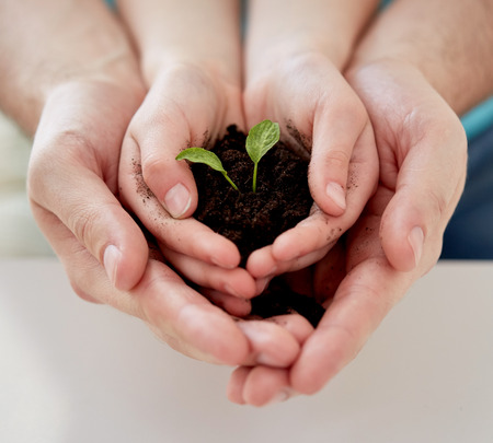 Photo for people, charity, family and ecology concept - close up of father and girl holding soil with green sprout in cupped hands at home - Royalty Free Image