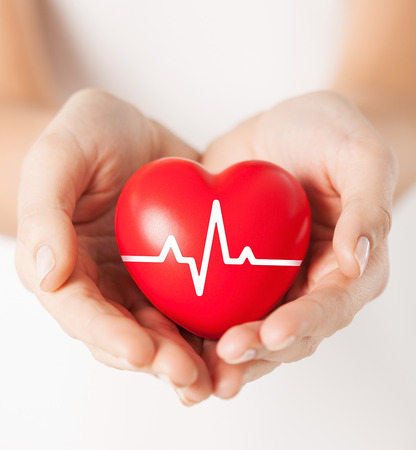 Foto de health, medicine and charity concept - closeup of female hands holding red heart with ecg line - Imagen libre de derechos