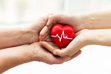 Foto per charity, health care, donation and medicine concept - man hand giving red heart with cardiogram to woman - Immagine Royalty Free