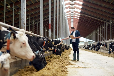Photo pour farmer with clipboard and cows in cowshed on farm - image libre de droit