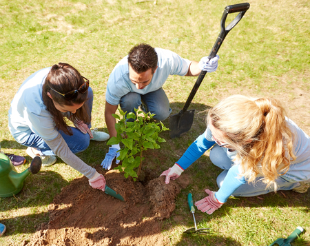 Photo pour volunteering, charity, people and ecology concept - group of happy volunteers planting tree in park - image libre de droit