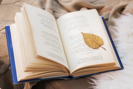 Photo pour literature, reading and poetry concept - book with autumn leaf on blanket at home - image libre de droit