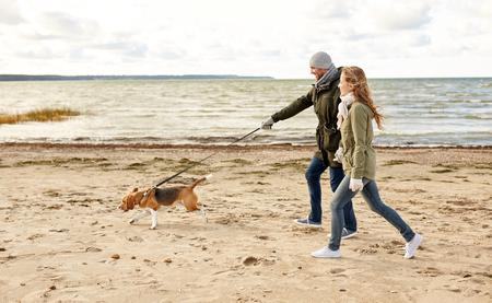Photo pour happy couple with beagle dog on autumn beach - image libre de droit