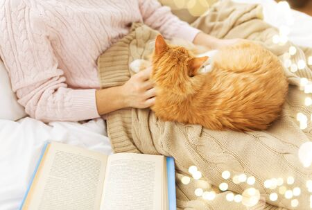 Photo pour close up of owner stroking red cat in bed at home - image libre de droit