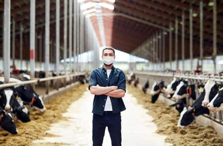 Photo pour male farmer in mask with cows on dairy farm - image libre de droit