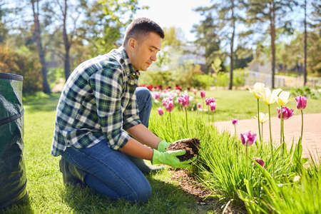 Photo for man pouring soil to flowers at summer garden - Royalty Free Image
