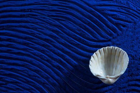 Photo pour Blue spirulina powder texture with white sea shells on waves background. Phycocyanin extract. Natural superfood, vegan, healthy dietary supplement. - image libre de droit