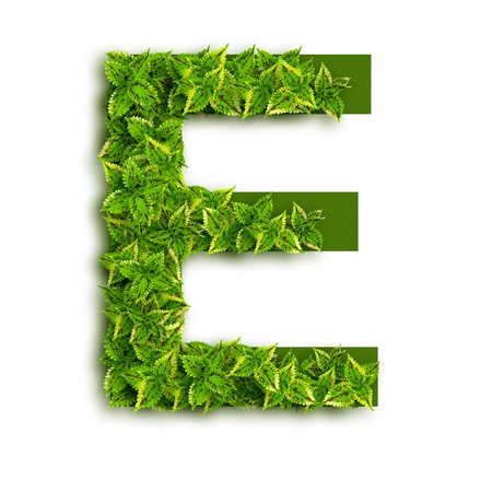 Letter E, alphabet of green leaves isolated on white background.