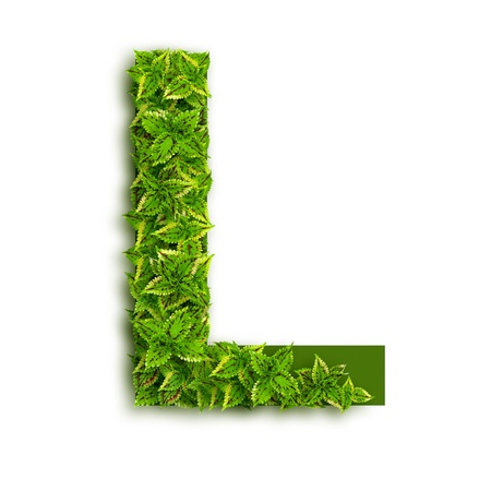 Letter L, alphabet of green leaves isolated on white background.