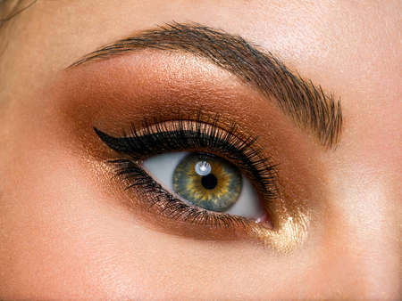 Photo for Beautiful female eye with brown, shiny makeup. Fashionable brown makeup. Macro image of a woman's eye. - Royalty Free Image