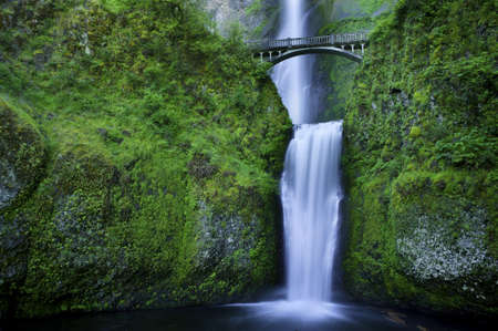 Multnomah Falls and the foot bridge across in the Columbia River Gorge