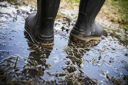 Dirty galoshes rubber boots in puddles and muddy