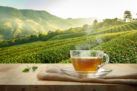 Photo pour Cup of hot tea with sacking on the wooden table and the tea plantations background - image libre de droit