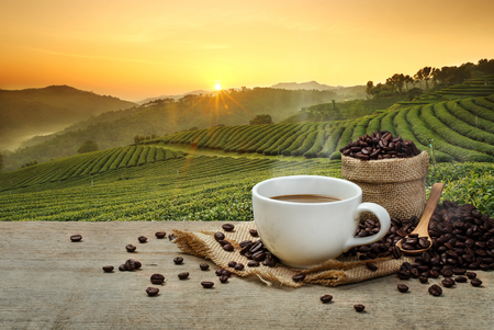 Photo pour Hot Coffee cup with Coffee beans on the wooden table and the plantations background - image libre de droit