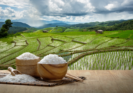 Foto de Jasmine rice and steamed rice in wooden bowl with the chopsticks on the wooden table with the plantation rice at sunset - Imagen libre de derechos
