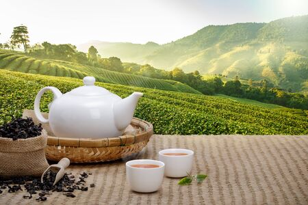 Photo pour Warm cup of tea with teapot, green tea leaves and dried herbs on the bamboo mat at morning in plantations background with empty space, Organic product from the nature for healthy with traditional - image libre de droit
