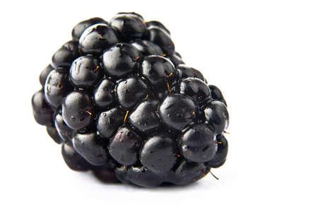 Black berries on white background